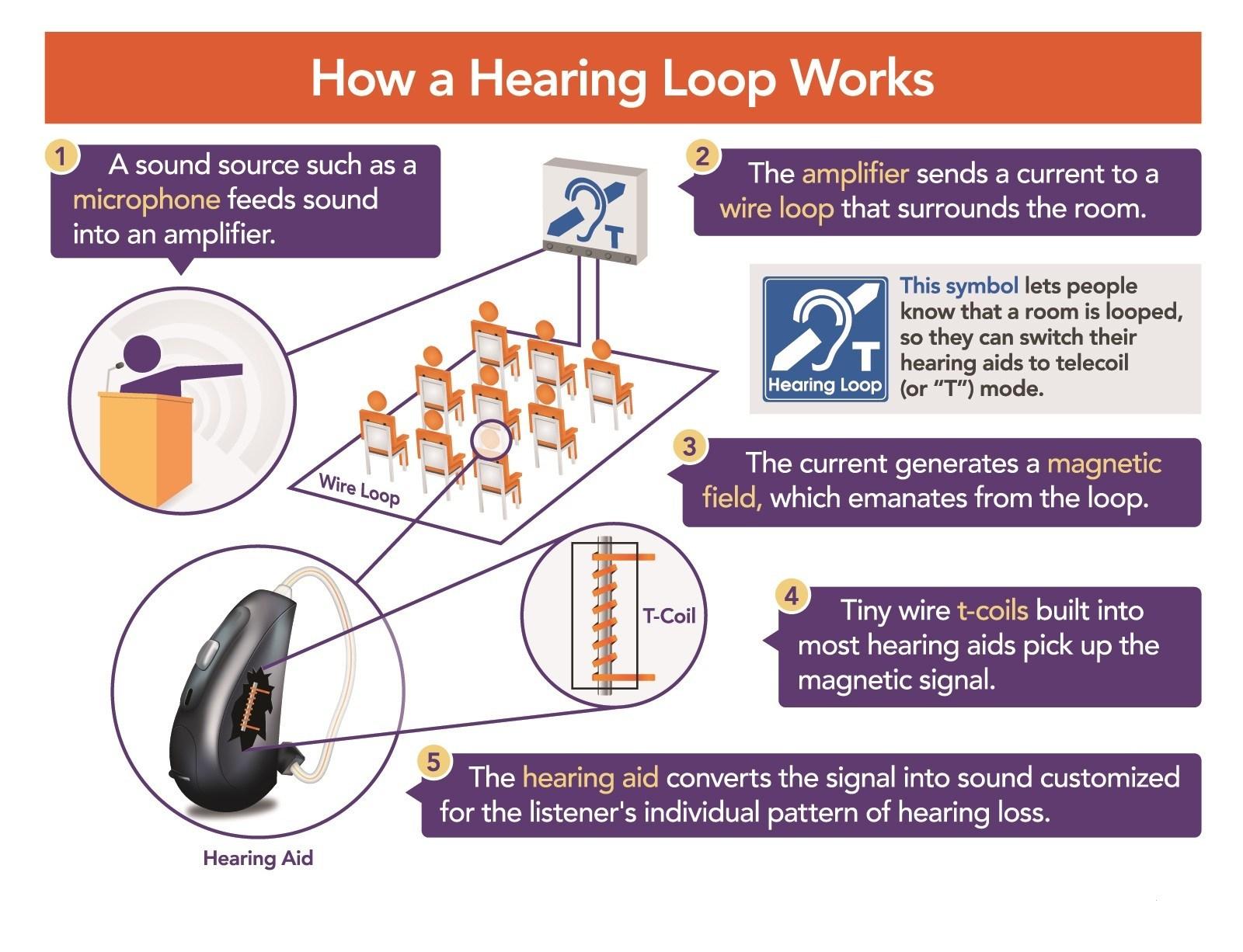 t loop wiring diagram wiring diagram save  t loop wiring diagram #5