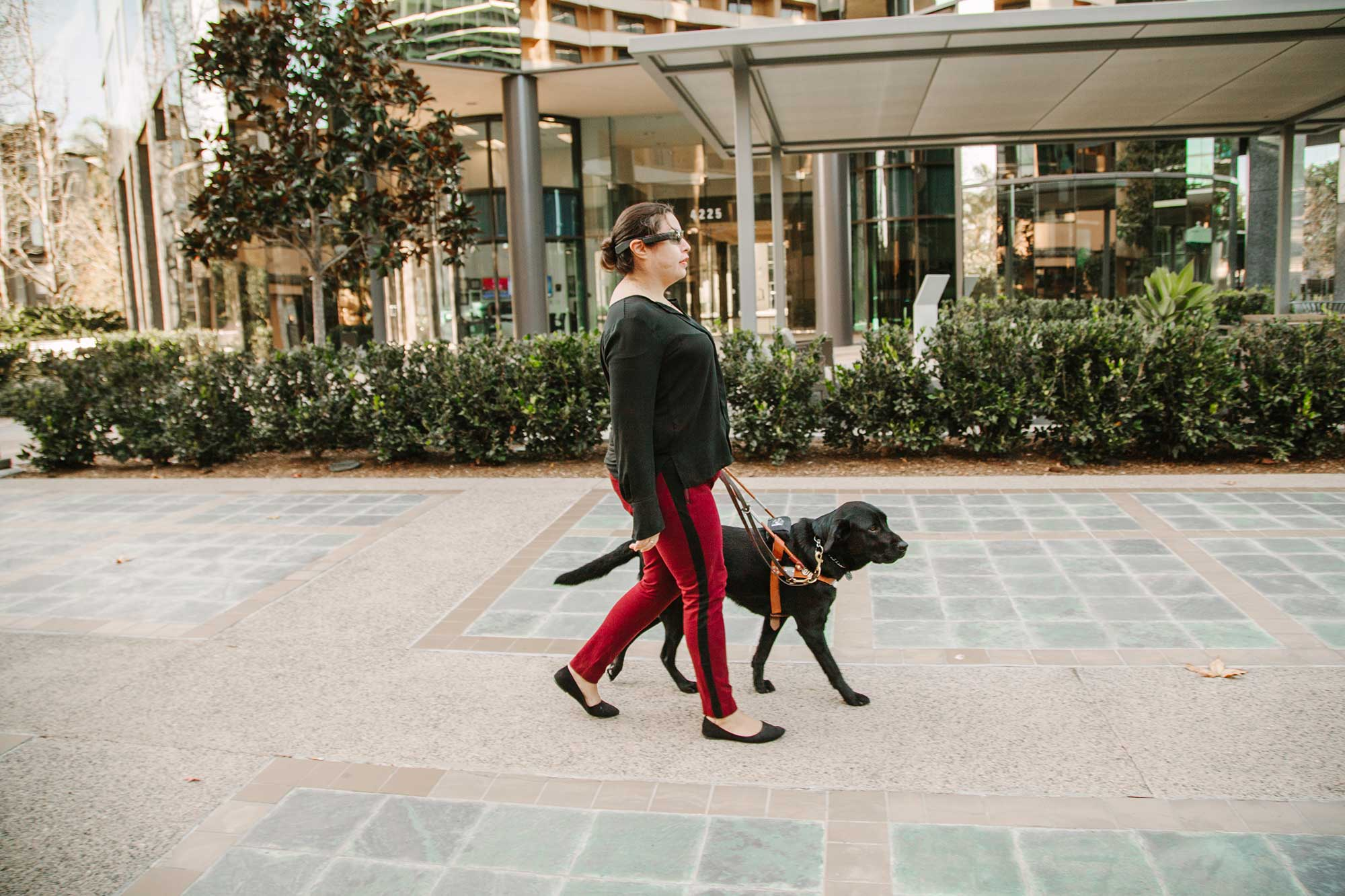 Picture of woman walking the dog down on the sidewalk